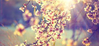 Đọc để yêu đời – Những bài học sâu sắc (p3)