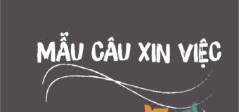 MẪU CÂU XIN VIỆC TRONG TIẾNG TRUNG HAY NHẤT