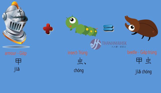 Hình ảnh Học từ vựng tiếng Trung qua hình ảnh dễ học nhớ lâu 6