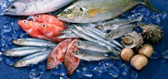 Từ vựng tiếng Trung về thủy sản, hải sản