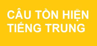 Câu tồn hiện trong tiếng Trung