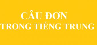 Câu đơn trong tiếng Trung