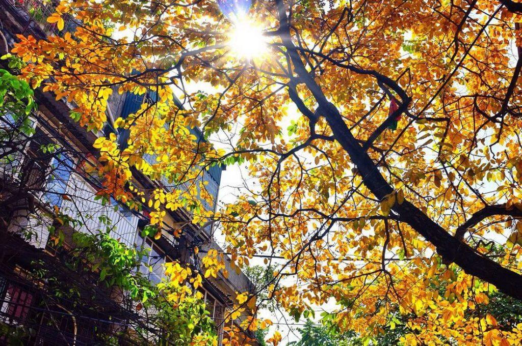 Hình ảnh Văn mẫu: Viết về thời tiết Hà Nội bằng tiếng Trung 3