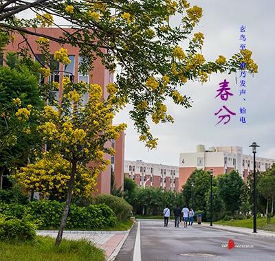 Hình ảnh Các trường đại học ở Vân Nam Trung Quốc 8
