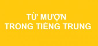 Từ mượn trong tiếng Trung