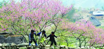 Đàm thoại tiếng Trung theo chủ đề 24: Khí hậu thời tiết