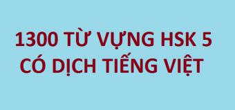 1300 Từ vựng HSK 5 có nghĩa tiếng Việt đầy đủ